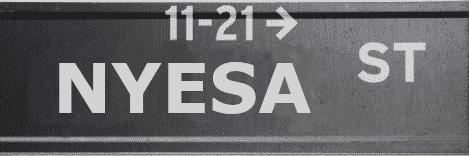 Nyesa